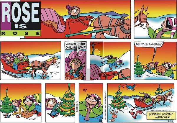 Rose is Rose - Sunday December 20, 2020 Comic Strip