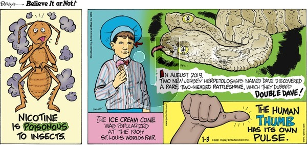 Ripley's Believe It or Not on Sunday January 3, 2021 Comic Strip