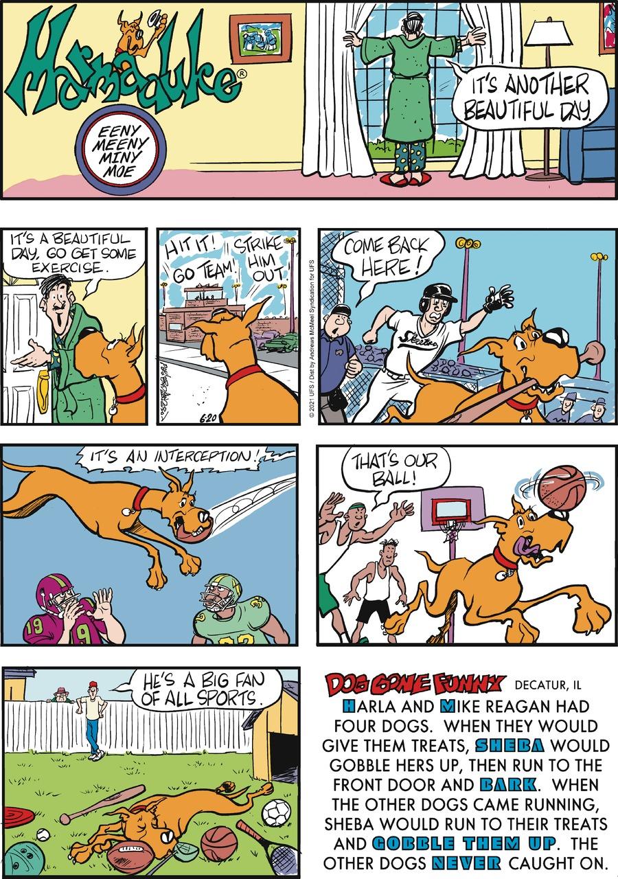Marmaduke Comic Strip for June 20, 2021