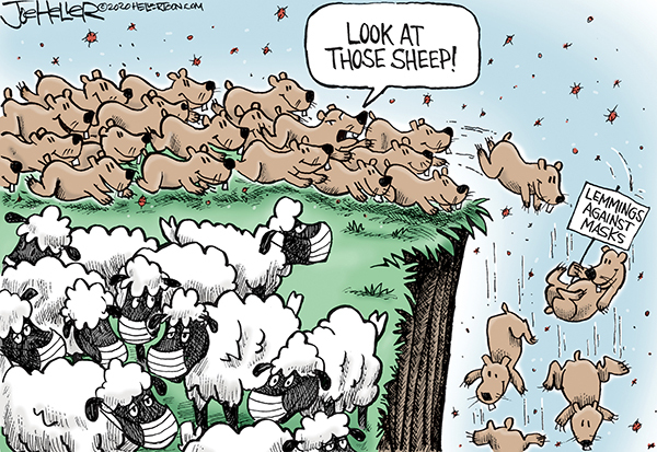 Flock of sheep, all wearing masks, a herd of lemmings, one bearing a