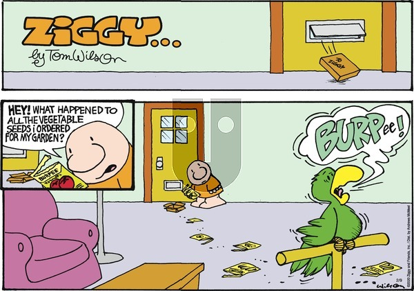 Ziggy on Sunday February 9, 2020 Comic Strip