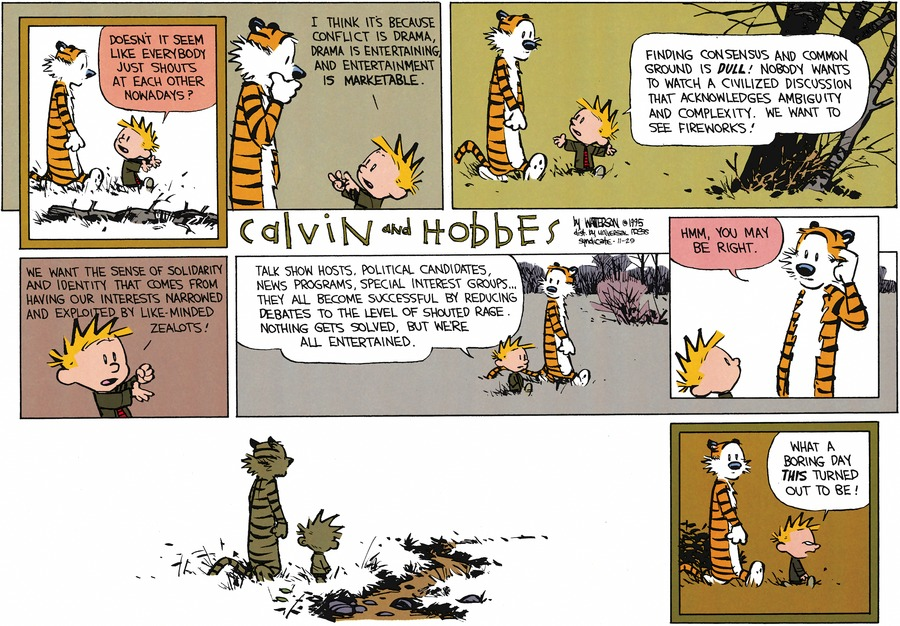 Calvin and Hobbes Comic Strip for November 29, 2015