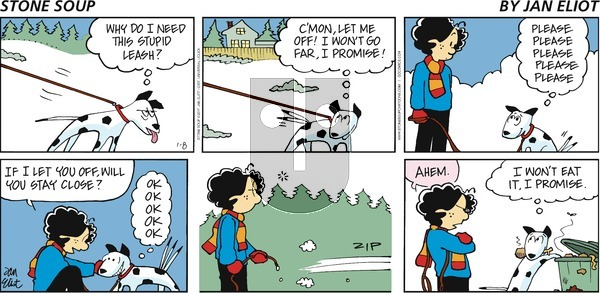Stone Soup on Sunday January 8, 2017 Comic Strip