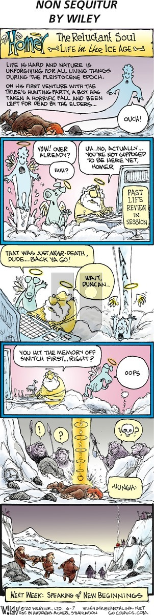 Non Sequitur on Sunday June 7, 2020 Comic Strip