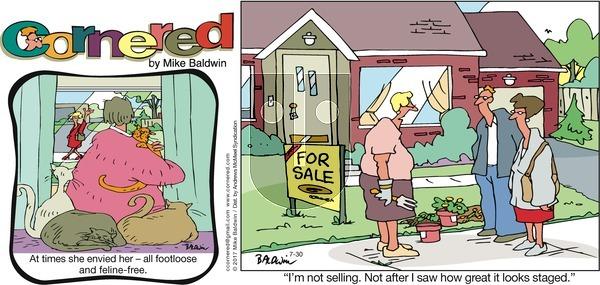 Cornered on Sunday July 30, 2017 Comic Strip