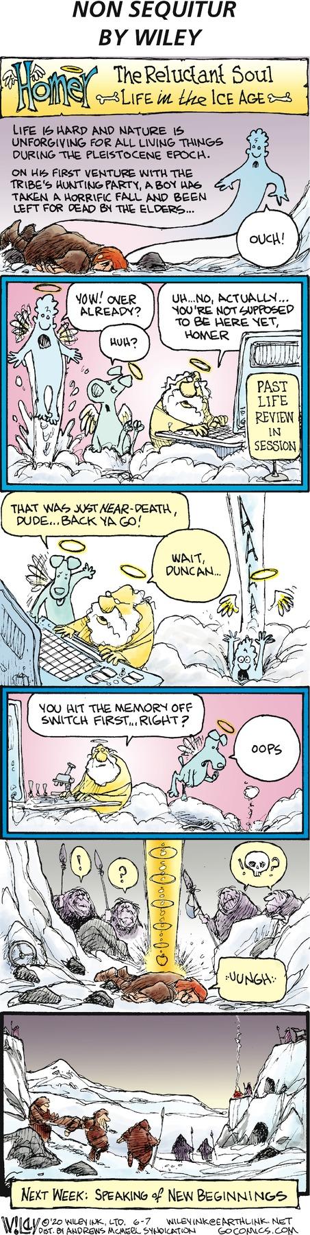 Non Sequitur Comic Strip for June 07, 2020