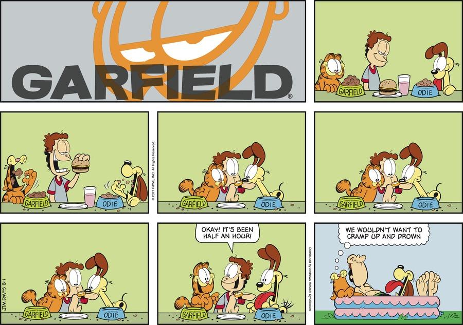 Garfield Comic Strip for August 01, 2021