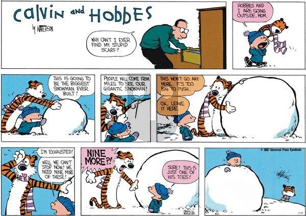 Calvin and Hobbes - Sunday January 22, 2012 Comic Strip
