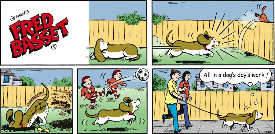 Fred Basset Comic Strip for July 13, 2014