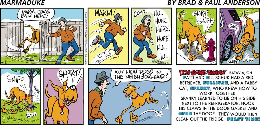 Marmaduke for Apr 2, 2017 Comic Strip