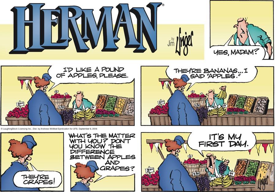 Herman Comic Strip for September 09, 2018