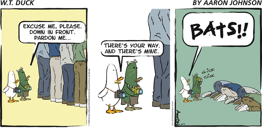 W.T. Duck for May 26, 2013 Comic Strip