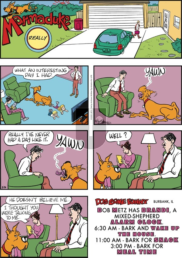 Marmaduke - Sunday May 16, 2021 Comic Strip