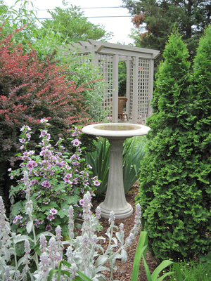A birdbath on a pedestal becomes a piece of sculpture in a garden, reflecting the sky and clouds. Birds will take advantage of a small tree or shrub nearby, where they can take shelter and preen their feathers.