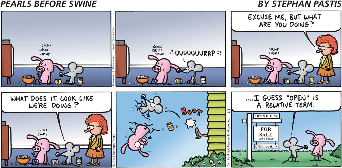 Pearls Before Swine Comic Strip for August 08, 2004