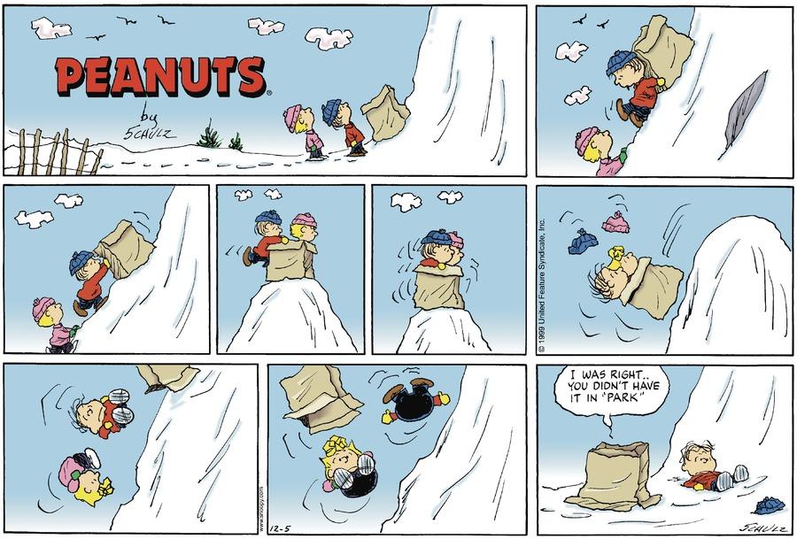 Peanuts Comic Strip for December 05, 1999