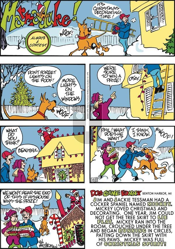 Marmaduke on Sunday December 20, 2020 Comic Strip