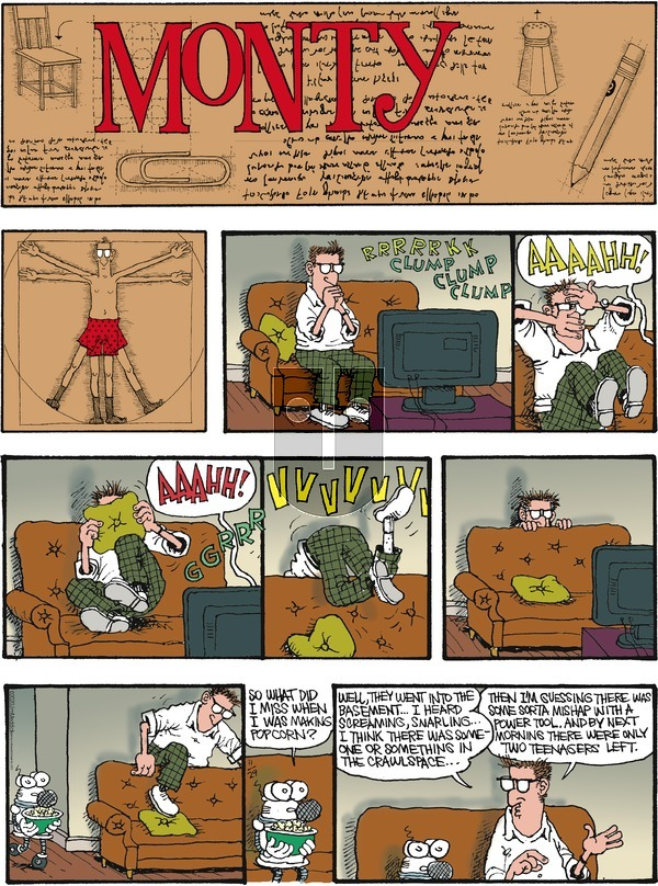 Monty - Sunday November 29, 2020 Comic Strip