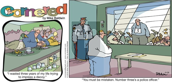 Cornered - Sunday September 29, 2019 Comic Strip