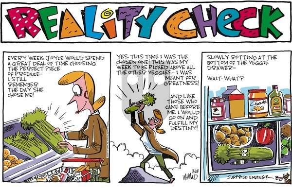 Reality Check on Sunday March 28, 2021 Comic Strip