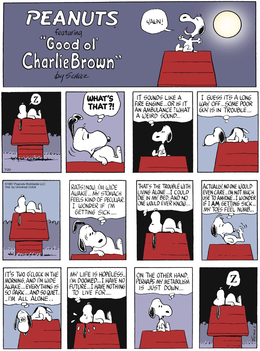 Peanuts Comic Strip for July 20, 2014