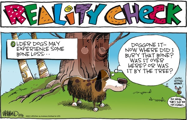 Reality Check on Sunday August 26, 2018 Comic Strip