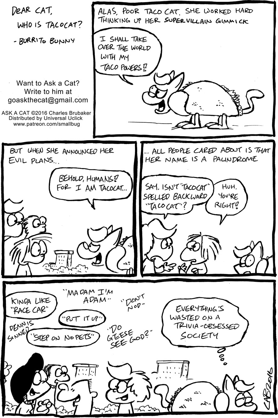 Ask a Cat Comic Strip for January 12, 2020