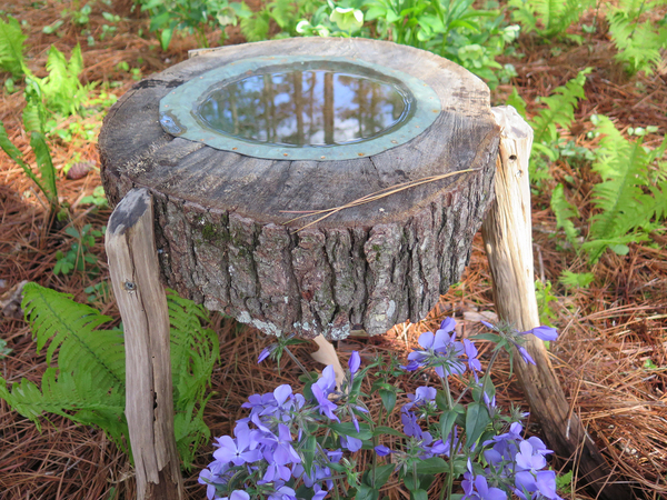 The style is up to you. A gardener in Virginia made this rustic birdbath from a cross-section of a tree trunk, a scrap of copper and a few sturdy tree trimmings cut to serve as legs. The birdbath is only about 10 inches across, but it's a delightful feature in her garden.