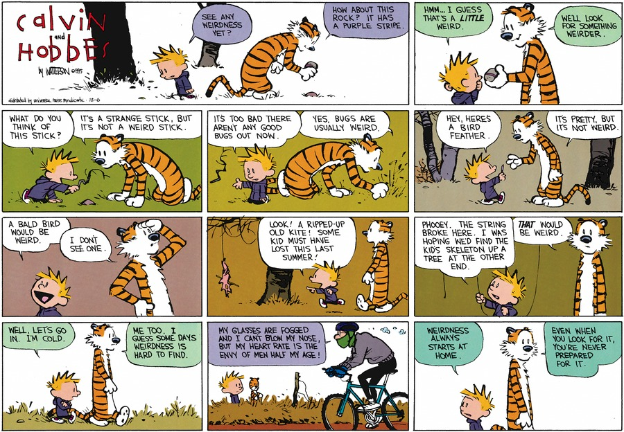 Calvin and Hobbes Comic Strip for December 06, 2015
