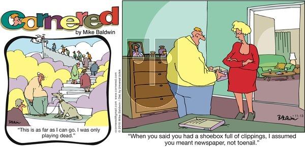 Cornered on Sunday November 13, 2016 Comic Strip