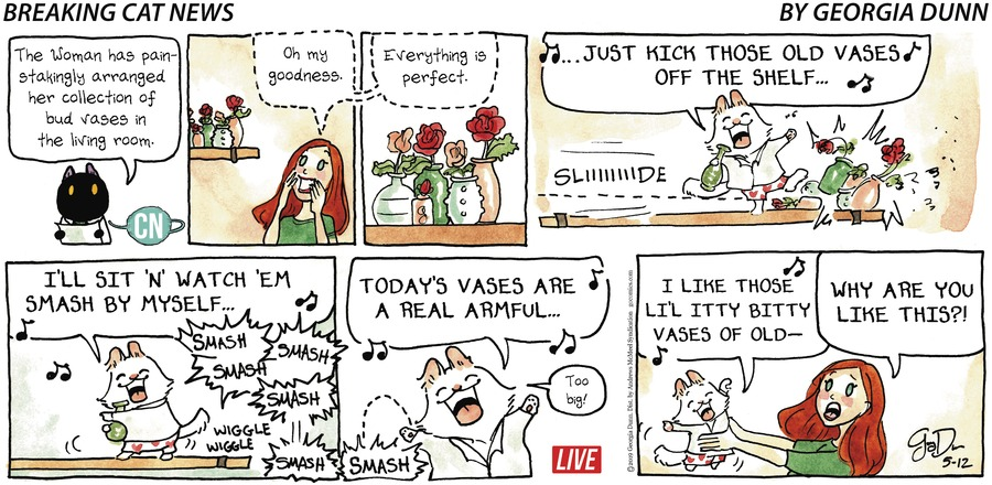 Breaking Cat News Comic Strip for May 12, 2019