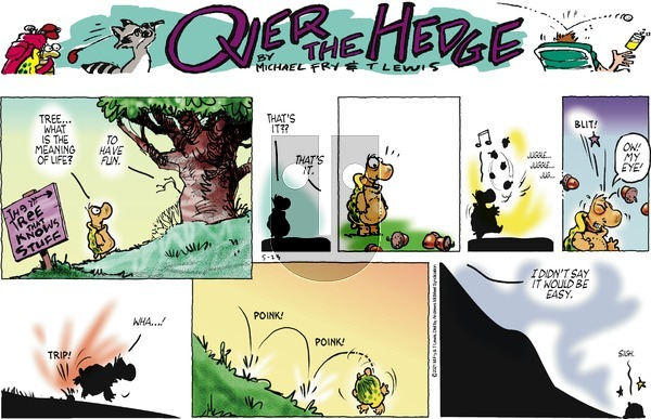 Over the Hedge on Sunday May 23, 2021 Comic Strip