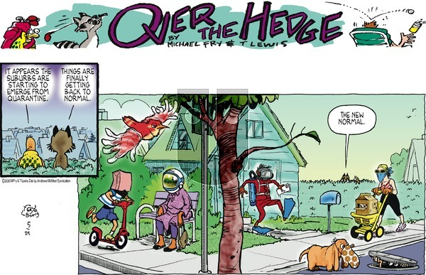Over the Hedge on Sunday May 24, 2020 Comic Strip