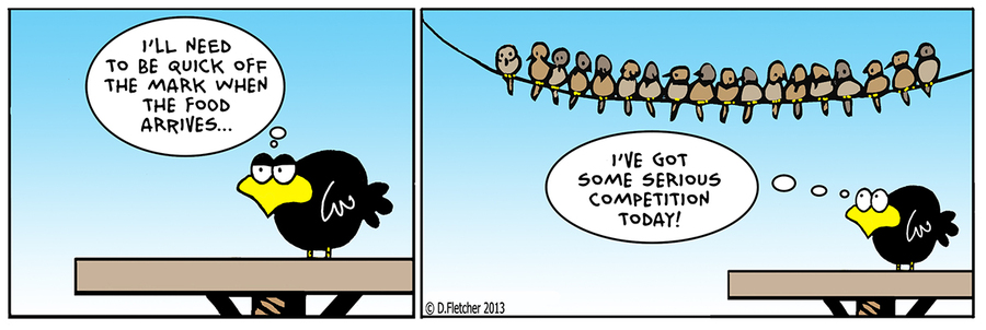 Crumb Comic Strip for August 09, 2013