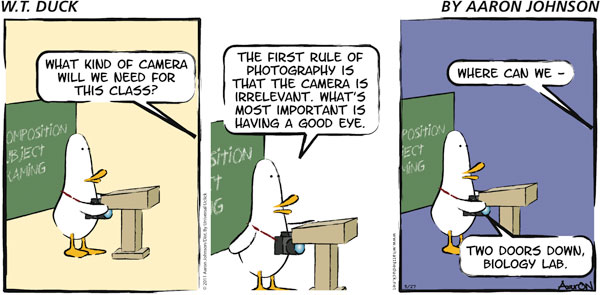 W.T. Duck Comic Strip for October 28, 2018