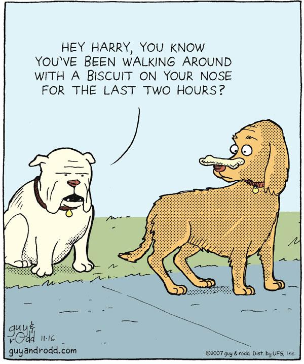 Brevity for Nov 16, 2007 Comic Strip