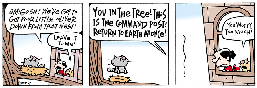 Ten Cats Comic Strip for May 16, 2013