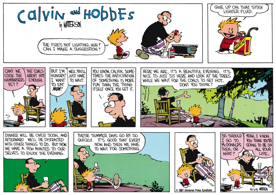 Calvin and Hobbes Comic Strip for August 02, 1987
