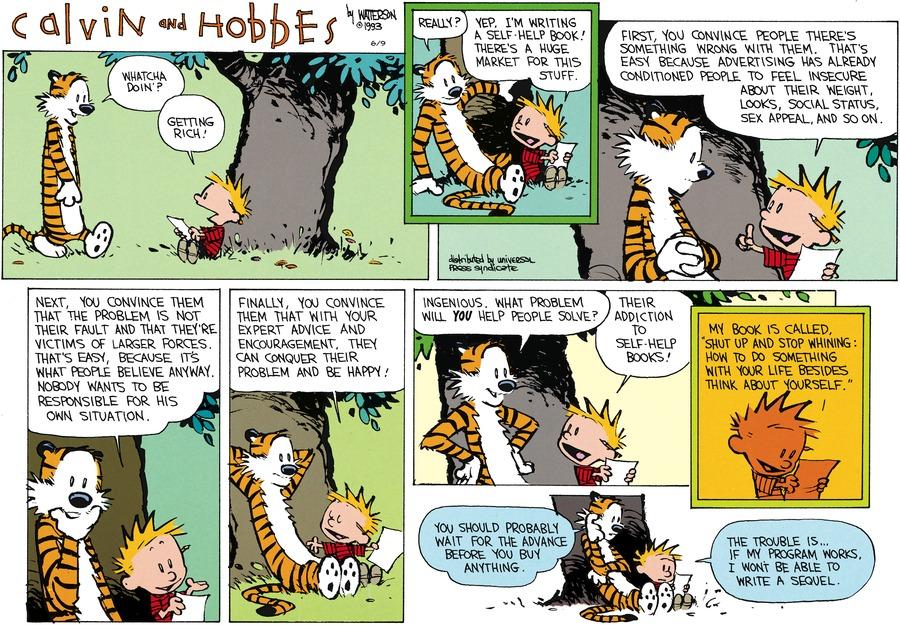 Calvin and Hobbes for Jun 9, 2013 Comic Strip