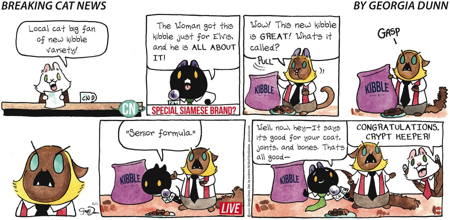 Breaking Cat News Comic Strip for March 01, 2020