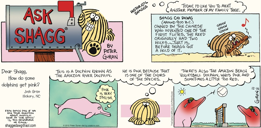 Ask Shagg for Dec 16, 2012 Comic Strip