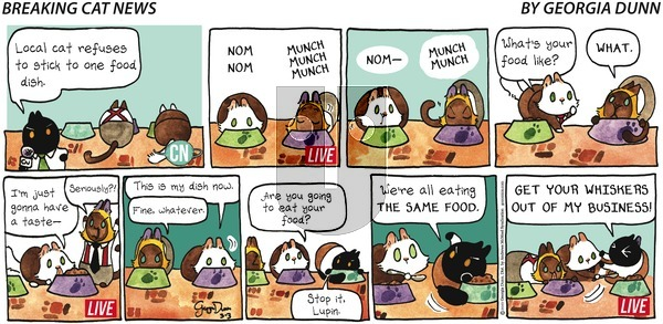 Breaking Cat News on Sunday March 3, 2019 Comic Strip