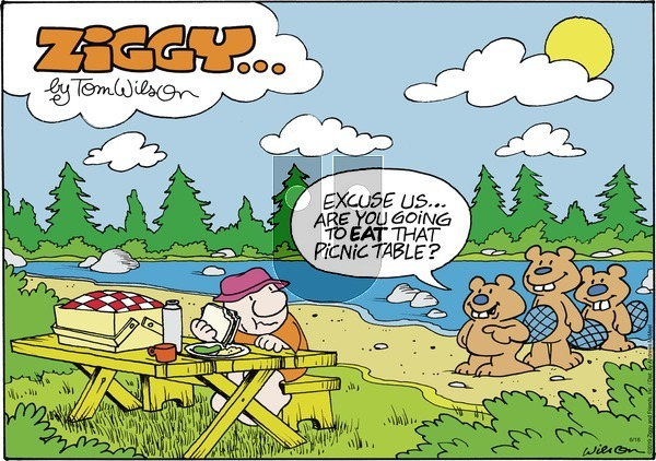 Ziggy on Sunday June 16, 2019 Comic Strip