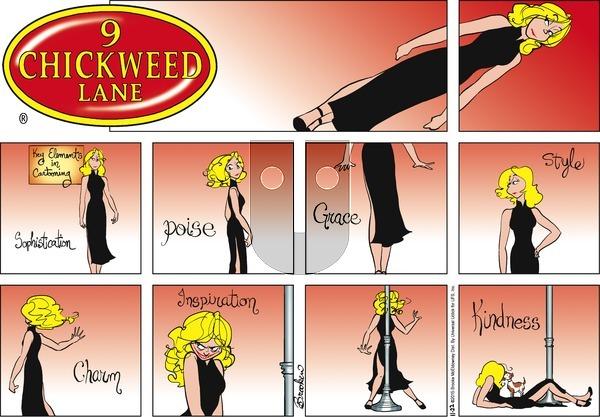 9 Chickweed Lane on Sunday November 22, 2015 Comic Strip