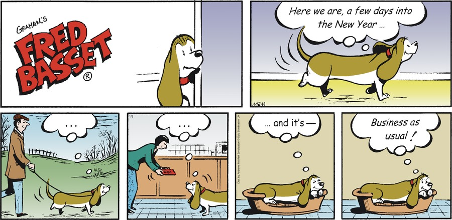 Fred Basset Comic Strip for January 03, 2021
