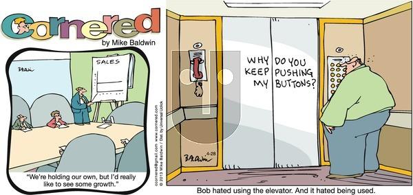 Cornered on Sunday April 28, 2013 Comic Strip