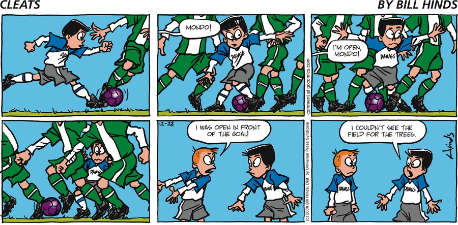Cleats Comic Strip for December 28, 2008