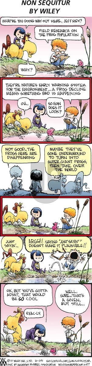 Non Sequitur on Sunday June 25, 2017 Comic Strip