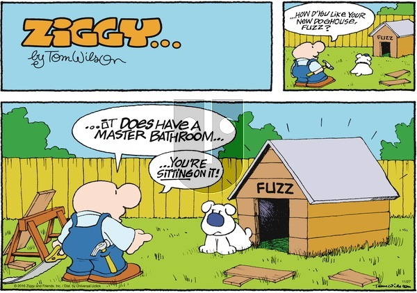 Ziggy on Sunday November 27, 2016 Comic Strip