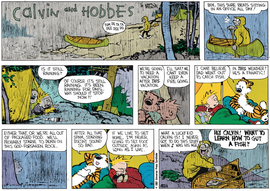 Calvin and Hobbes Comic Strip for August 16, 1987